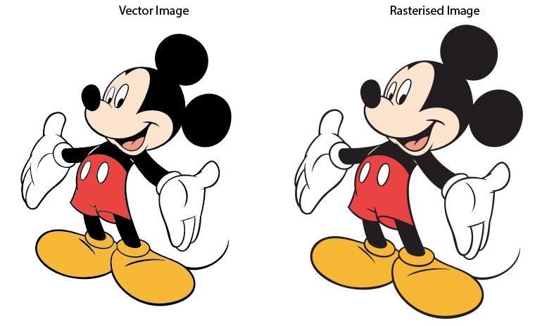 5-Vector-Image-at-100-percent