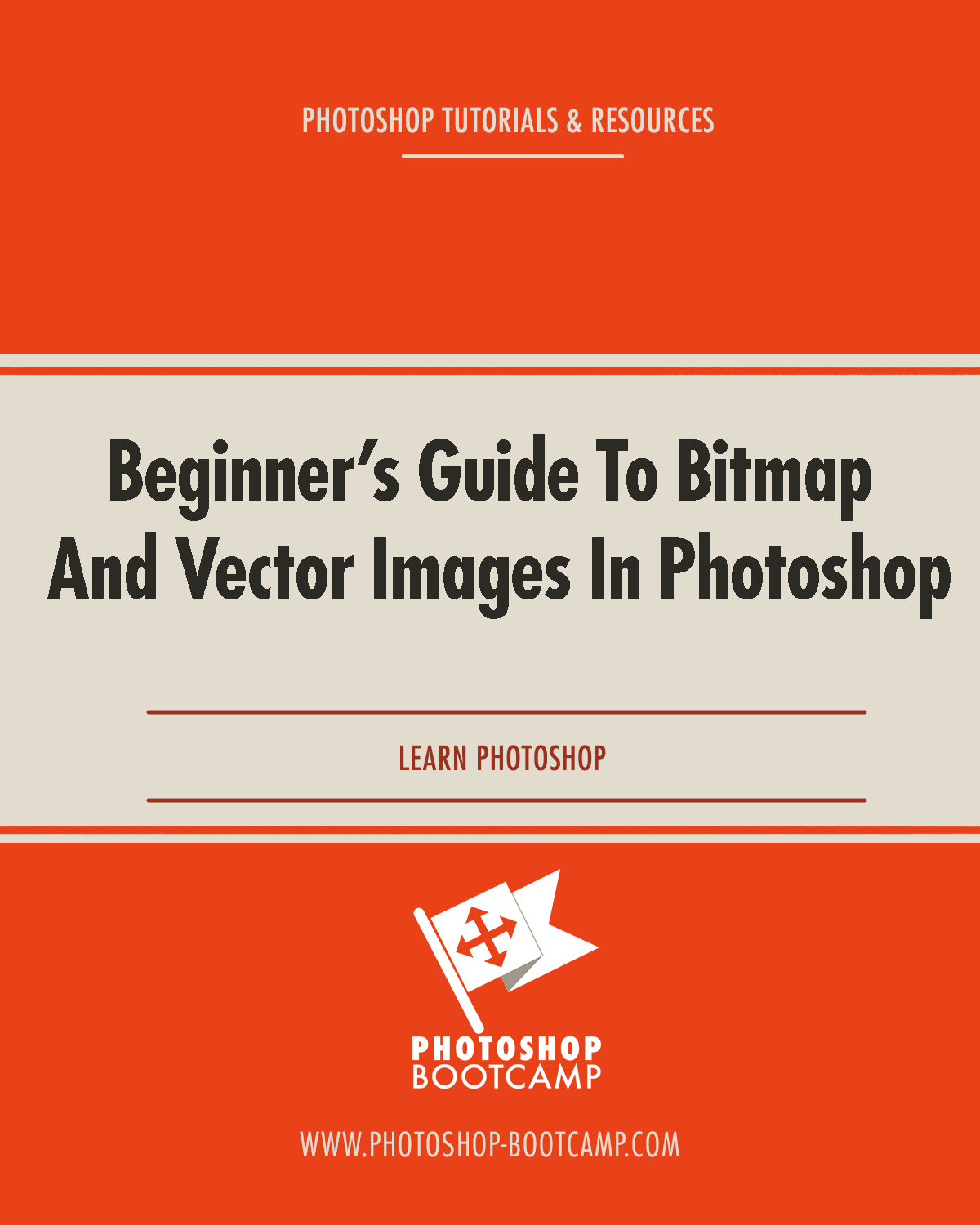 Beginner's Guide To Bitmap And Vector Images In Photoshop