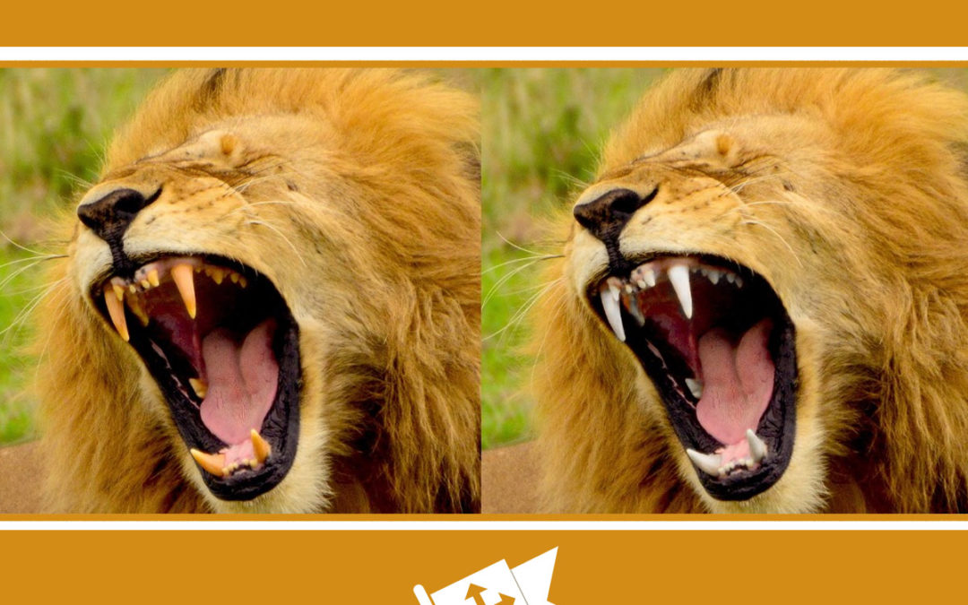 How To Whiten Teeth In Photoshop Photoshop Bootcamp