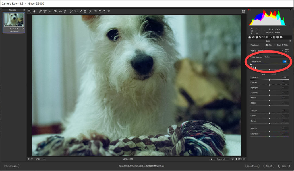 How To Fix A Color Cast With The White Balance Tool In Photoshop